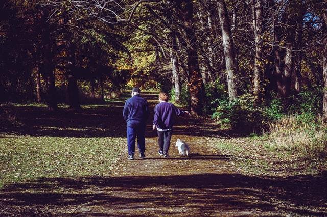 Ut i naturen med din hund